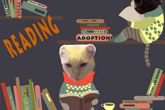 Thankful Thursday Blog of Cats reading