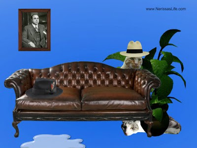 Prohibition Error Adventurcats time travel to 1928