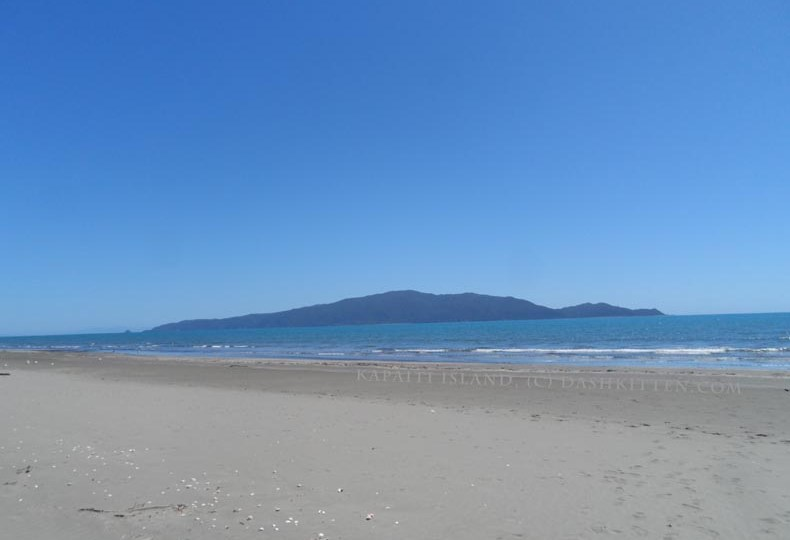 Kapiti Island on the Kapiti Coast