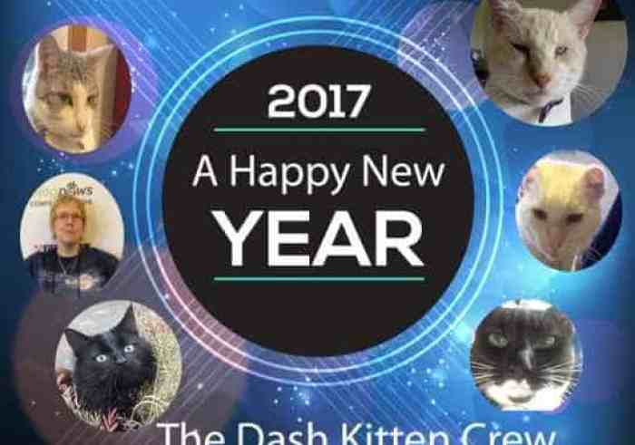 A new year's eve poster celebrating the blog Dash Kitten