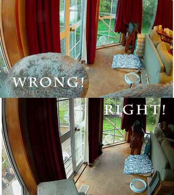 How to site a cat camera right and wrong