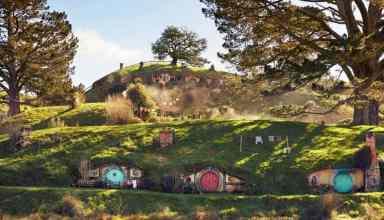 Visit Hobbiton See the Hobbit holes. Simply Gorgeous!