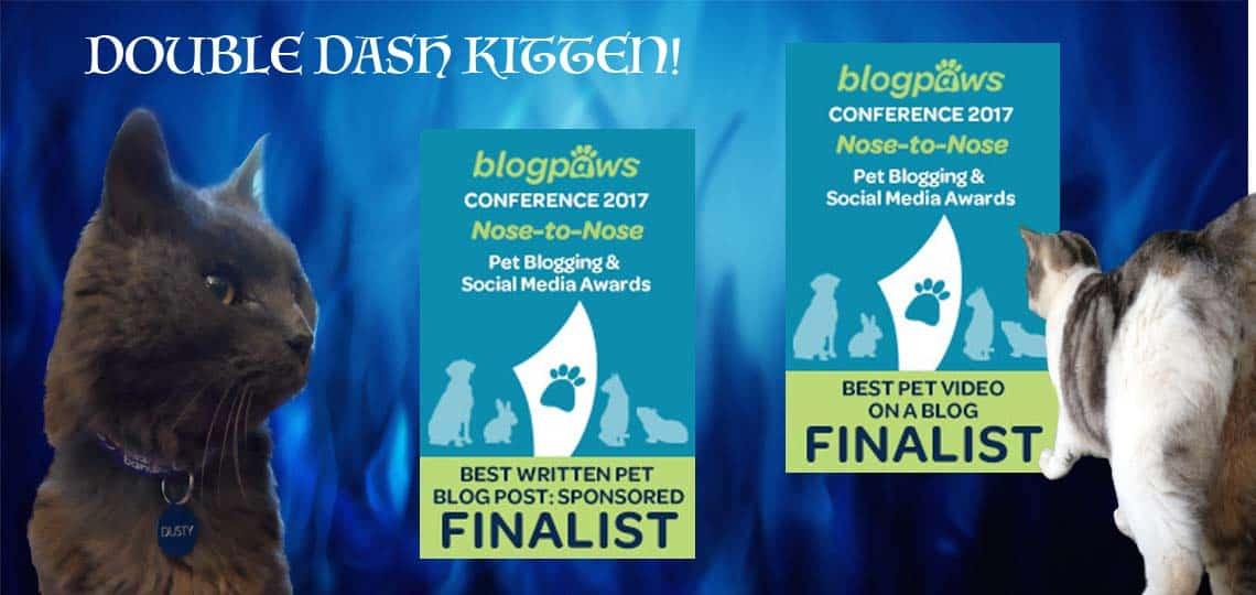 BlogPaws 2017 Finalist