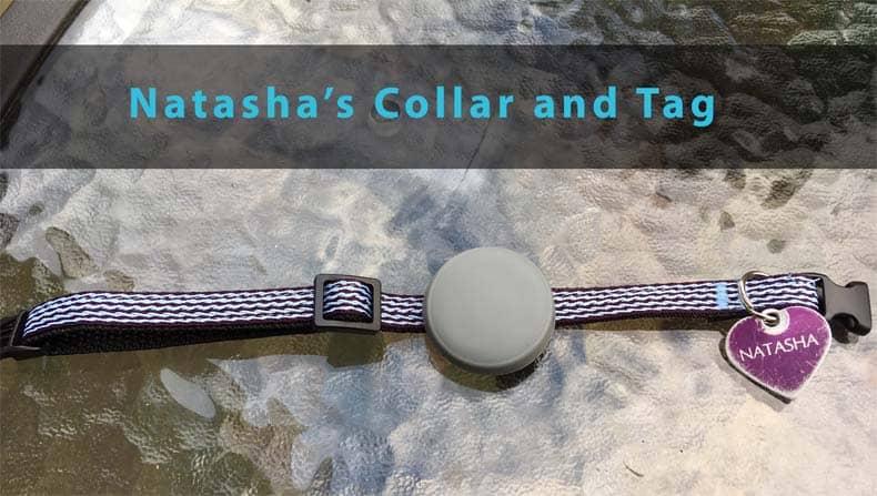Tabcat Cat Locator Tracker collar and tag