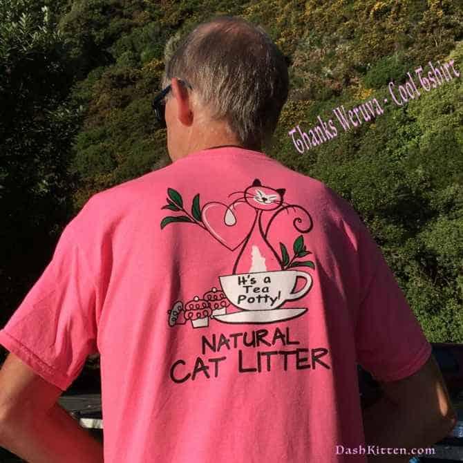 Dusty Visits Eastbourne Weruva Tshirt