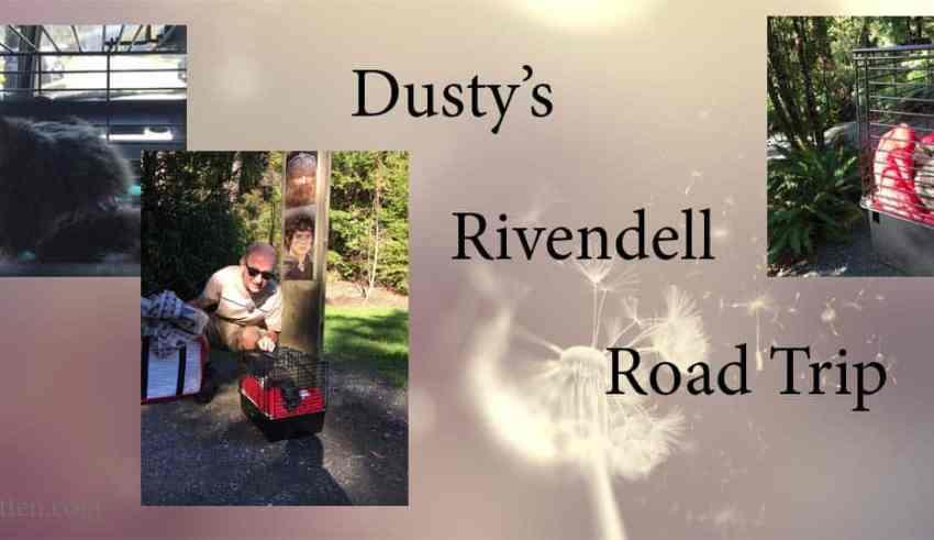Dusty's Rivendell Road Trip header