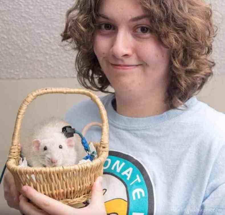 Meet Healing Whiskers Amazing Rats