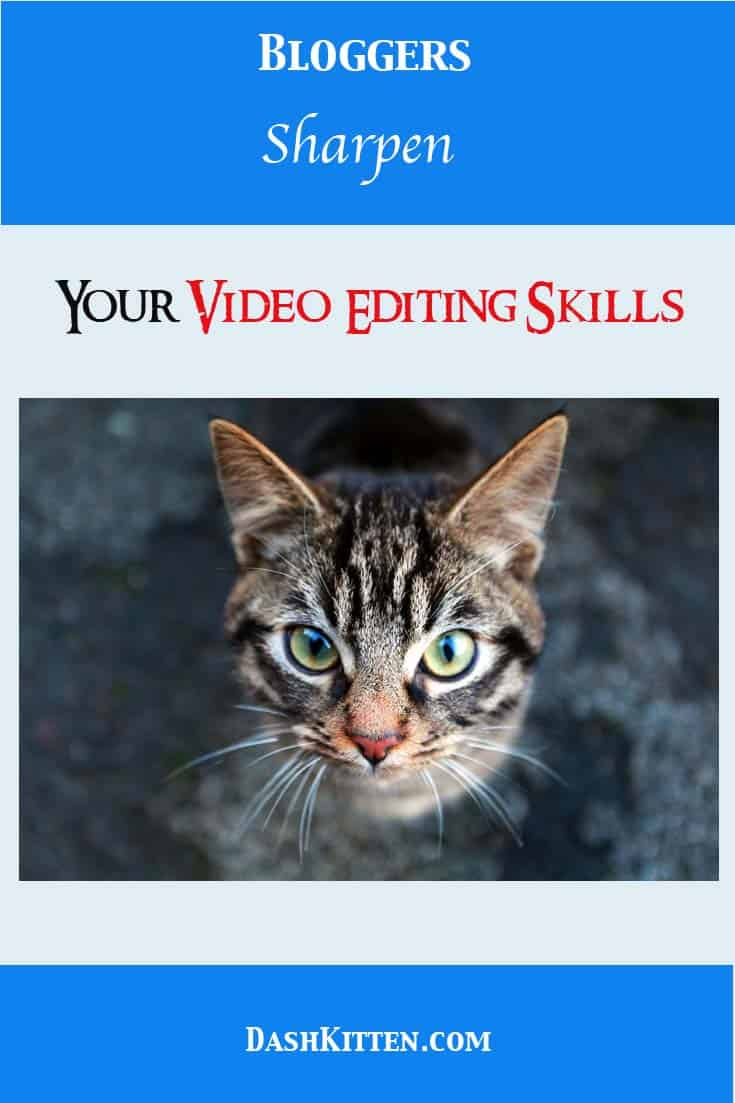 Cat Bloggers Should Their Sharpen Movie Editing Skills to Keep at the top of their game and grab readers attention. Facebook uploads, Twitter short videos all nedd you to edit for quality and sound.