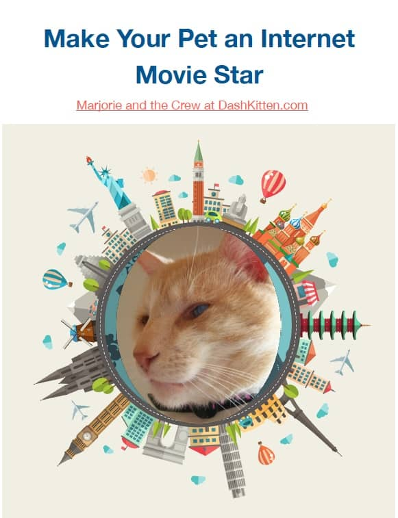 How to Make Your Pet an Internet Movie Star ebook