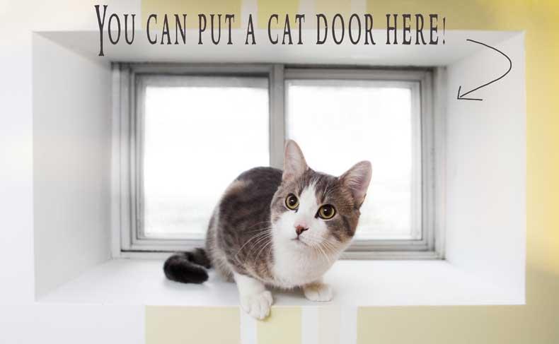 Cat Door Dash Kitten Crew