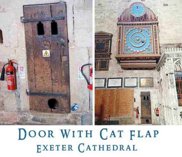 Cat Door Exter Cathedral
