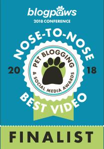 Nose to Nose Awards 2018