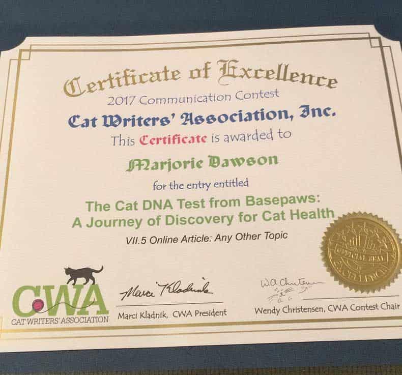 CWA Certificate for Dash Kitten