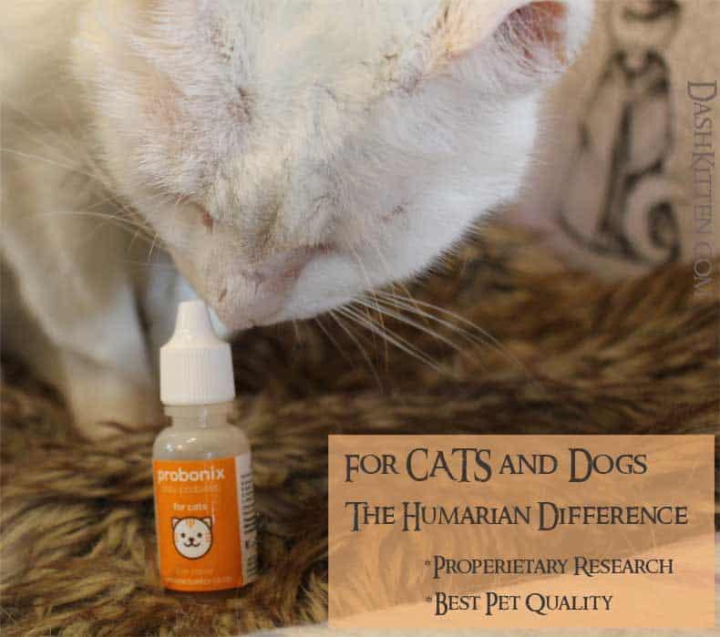 Probiotics Probonix for Cats and Dogs