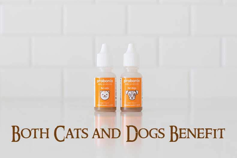 Probonix for Pets