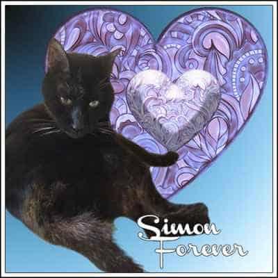 Sabina Ayne and Simon