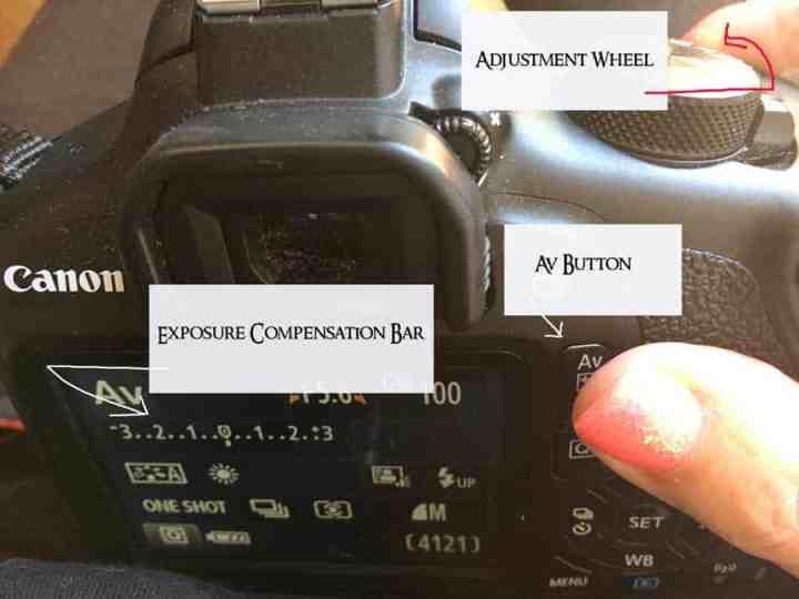 Exposure compensation dials