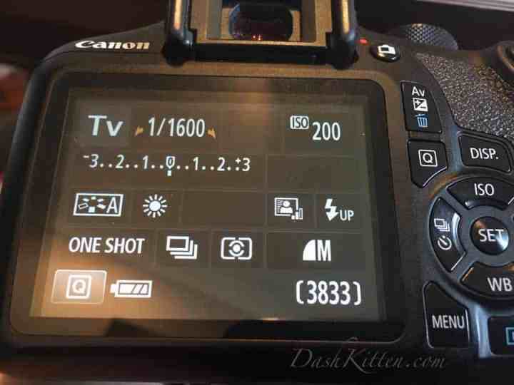 Canon Shutter Speed Back Picture