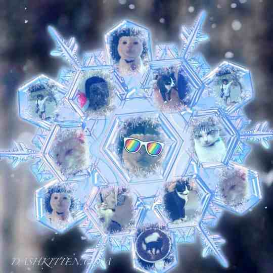 Snowflake Collage Filter of Photographs
