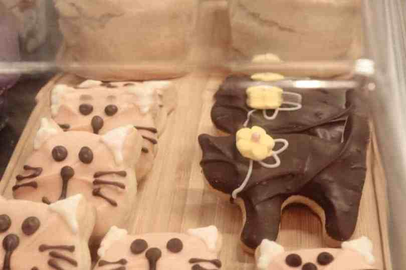Smartphone Movie Fun Cat Cafe Biscuits