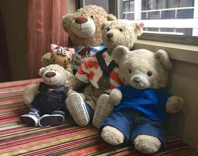 A hug of bears visits Wellington, New Zealand, Travelodge