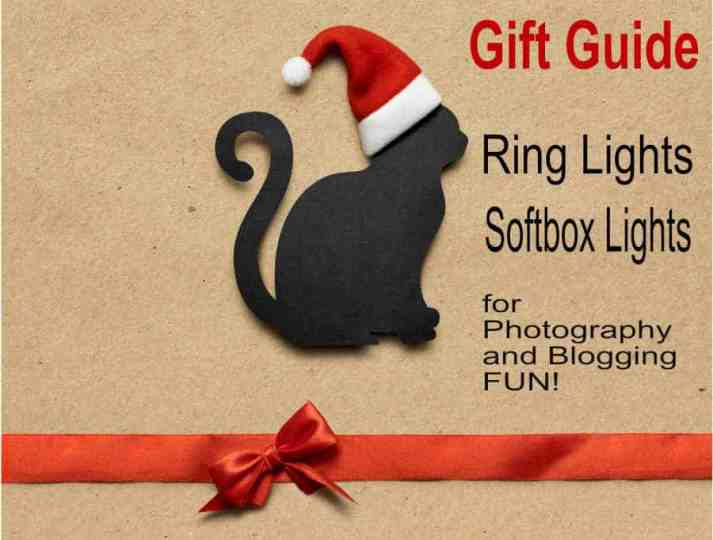 Photograhy gift guide graphic for helpful hints and photo tips