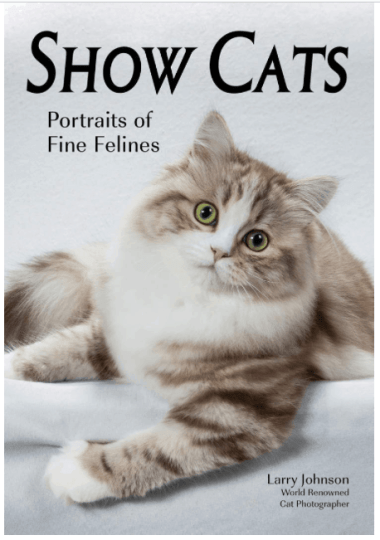 Photograph of the Larry Johnson Show Cats Book