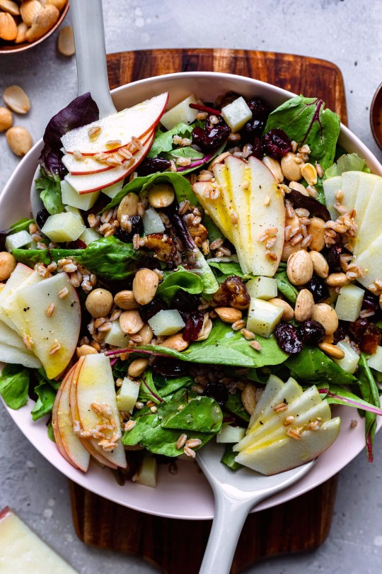 Fall Salad With Apple Cider Vinaigrette - Dash Of Mandi