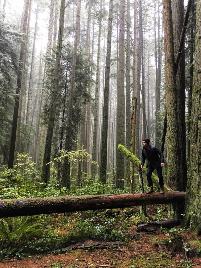 Vancouver woods