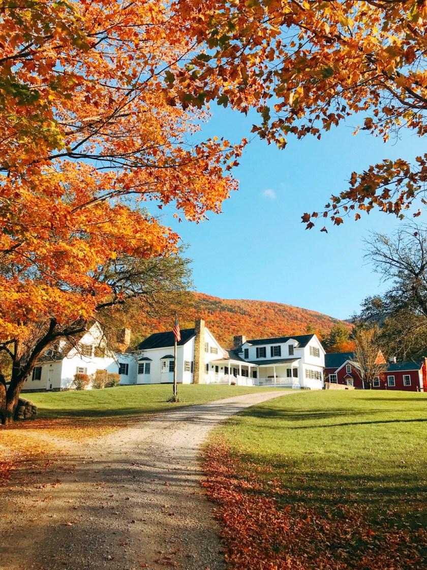 Boorn Brook Farm