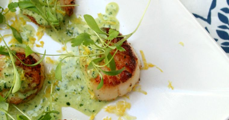 Seared Scallops with Creamy Basil Pesto Sauce