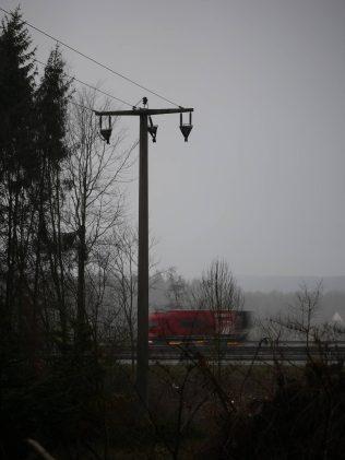 Gerissene Stromleitung an der Waldstraße in Gravenhosrt