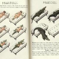 Künstlerbuch | Artists' book: Luigi Serafini. Codex Seraphinianus (oder: das seltsamste Buch der Welt)