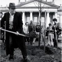 Joseph Beuys – 7000 Eichen | Der Versuch einer sozialökologischen Gemeinschaftsarbeit
