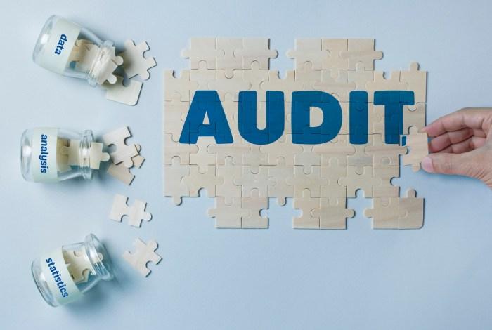 free data audit