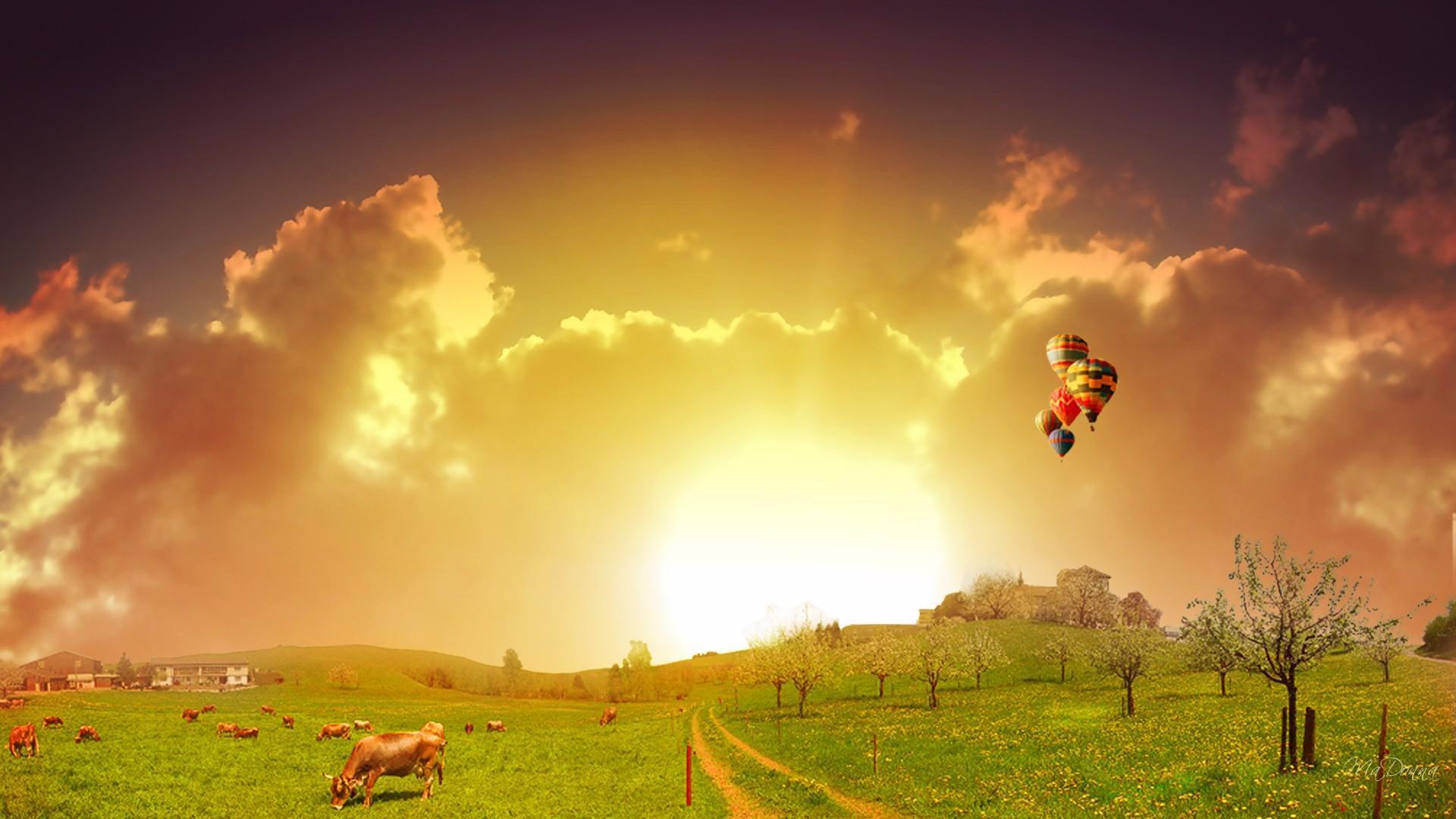 Sunset Hot Air Balloons Hd Desktop Wallpaper Widescreen