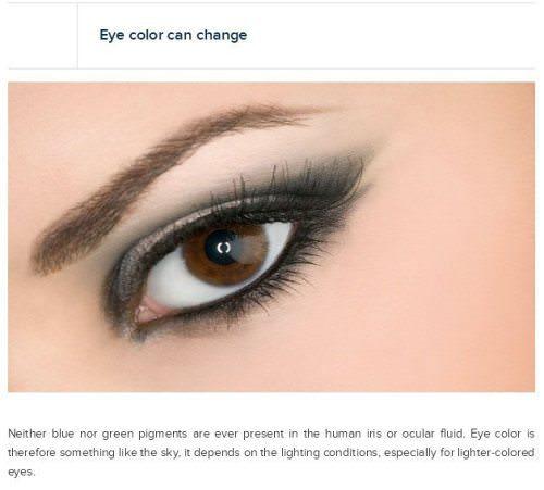 eye information