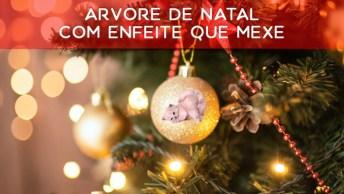 Arvore De Natal Com Enfeite Que Mexe, Hahaha! Espera Não É Enfeite É Um Gatinho!
