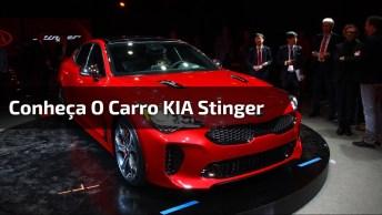 Vídeo Mostrando O Carro Kia Stinger, Você Vai Se Apaixonar Por Esta Maquina!