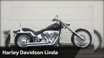 Que Maquina Linda! Para Todos Apaixonados Pela Harley Davidson!