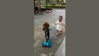 Cachorrinho Toma Patinete De Criança, Veja Como Ele Fez Isso!