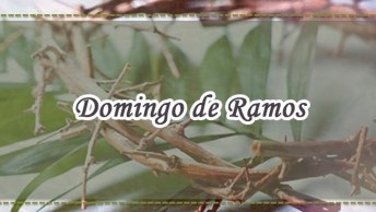Dia 14 De Abril É Domingo De Ramos - Inicia-Se A Semana Santa!