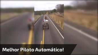 Com A Crise Da Gasolina, O Jeito É Comprar Esse Veículo Com Piloto Automático!