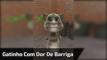 Gatinho Com Dor De Barriga, Compartilhe Nos Grupos Do Whatsapp De Amigos!