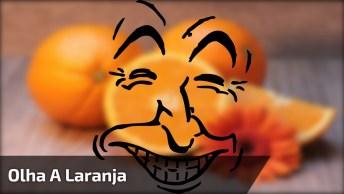 Manter O Bom Humor Faz Bem A Saúde! Dar Boas Risadas Também!