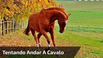 Menina Tentando Andar A Cavalo, Para Rir Muito E Compartilhar!