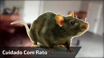 Pegadinha Com Rato Em Academia Faz Amigo Se Revelar, Confira!