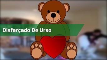 Rapaz Disfarça De Urso De Pelúcia E Toma Vassouradas Hahaha!