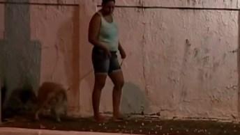 Pegadinha Da Macumba Que Anda E Macumbeiro Maluco, Até O Cachorro Assustou. . .
