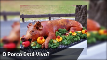 Pegadinha Do Porco 'Vivo', O Coitado Ainda Esta Gritando Hahaha!